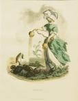 grandville-jean-jacques-les-fleurs-animees-pavot-19th